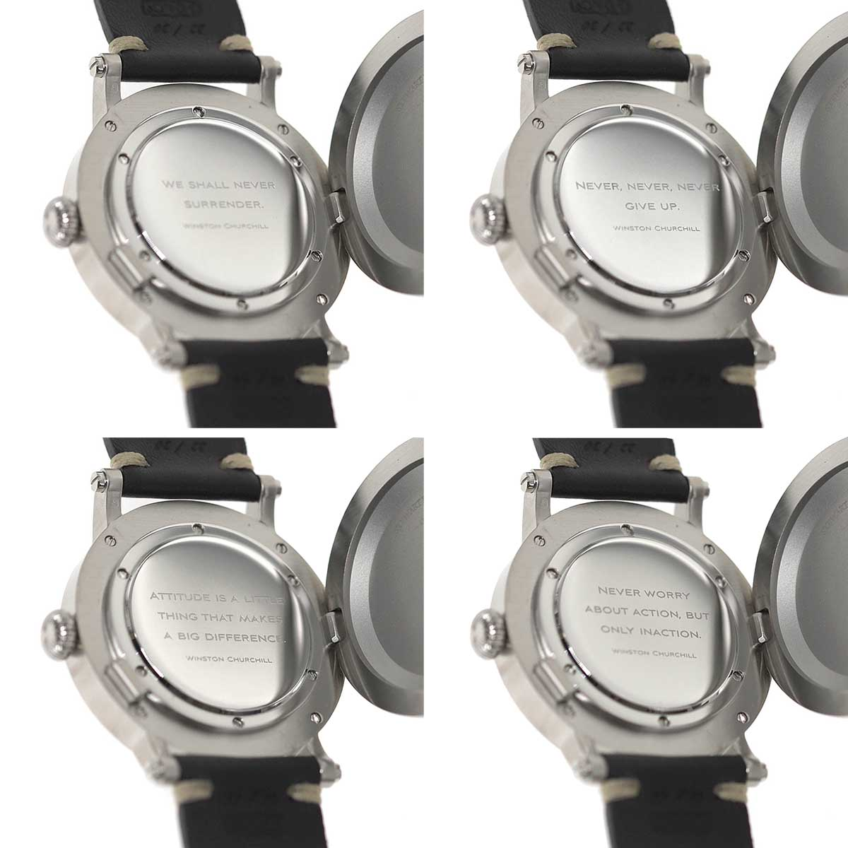 Double caseback with hinged dust cover
